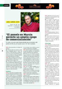 Pepe Zamora - POMELO
